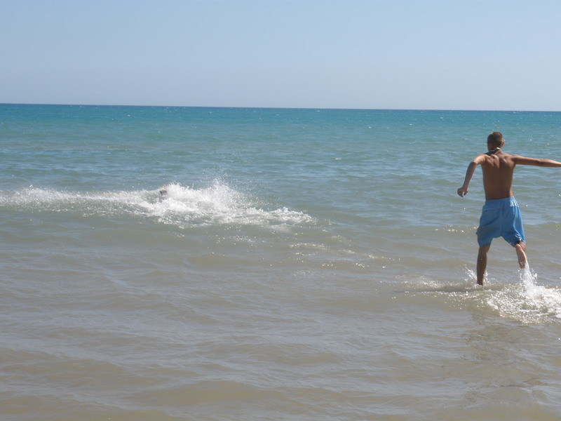 Jūratės sargas