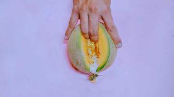 Kuo skiriasi vulva ir vagina?